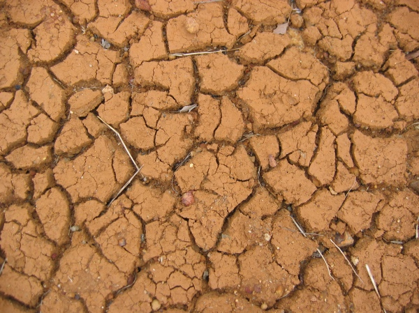 Drought in Western Australia